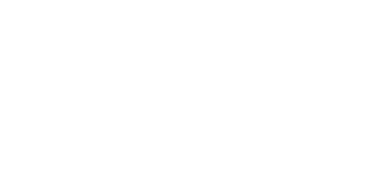 Real Estate Institute - Logo